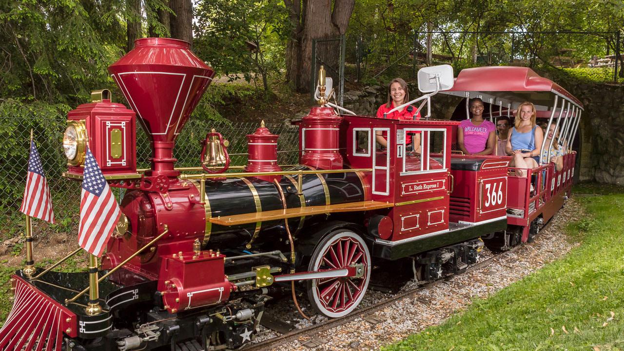 Waldameer Train